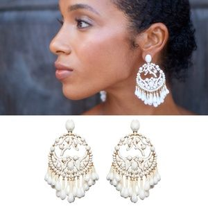 NEW India Hicks Branching Out Earrings